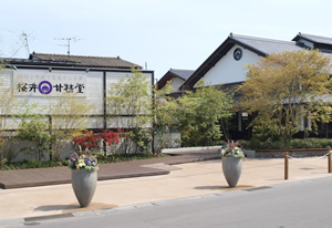 桜井甘精堂 本店